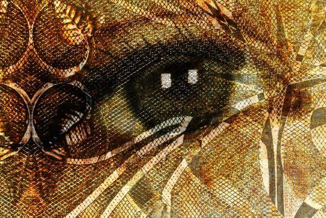 "Close-up detail 1:1 - ""Quia Vincet Omnem Rem Subtilem"""
